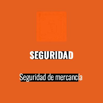 SEGURIDAD_100X100